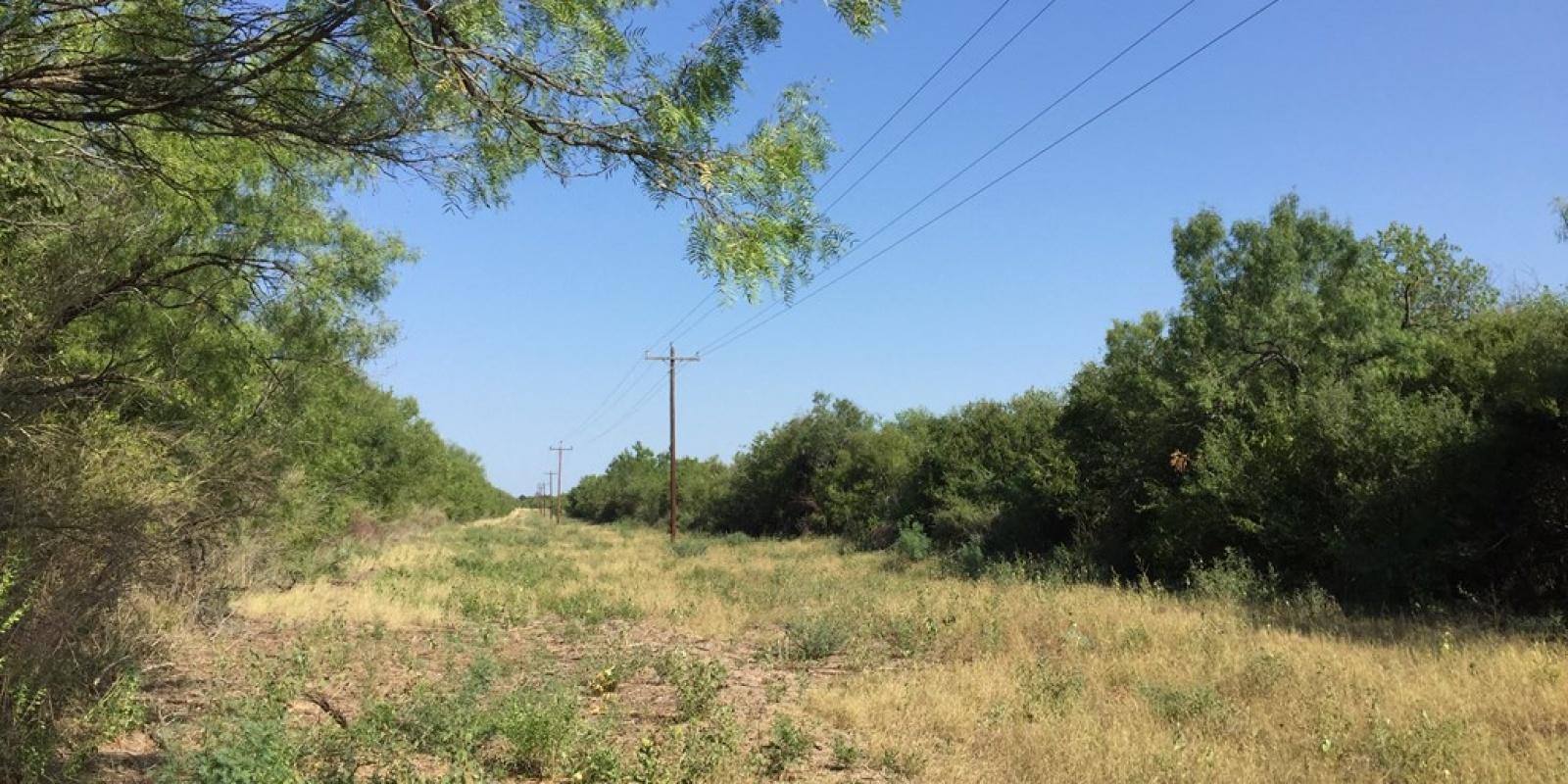0 Highway 55, Uvalde, 78801, ,Raw Land,For Sale,Highway 55,1106